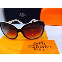 Hermes Sunglasses H1290/S Brow...